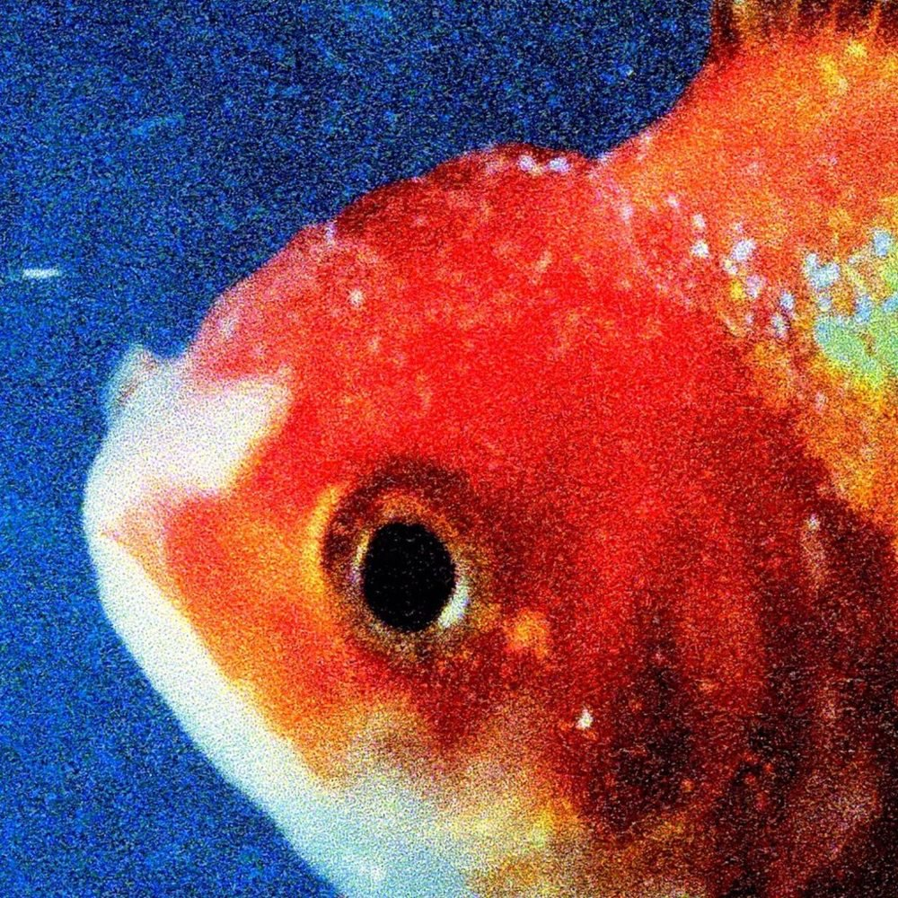 Vince Staples 'Big Fish Theory'